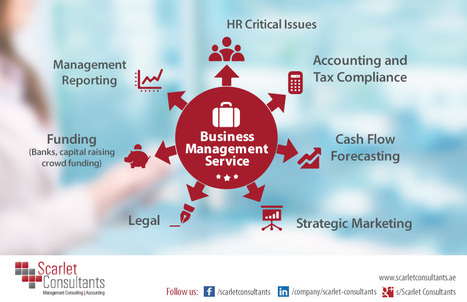 Business Management Consulting UAE | Business(s) | Scoop.it