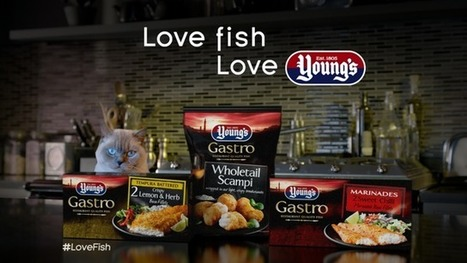 Young's Launch Biggest Ever Gastro Campaign with TV Advertising and 'Date Night' Push | Aquaculture Directory | Aquaculture Directory | Scoop.it