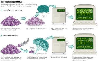 La materia oscura del universo microbiano | microBIO | Scoop.it