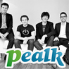 Pealk, the startup that threatened LinkedIn!