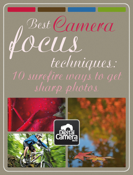 Best camera focus techniques: 10 surefire ways to get sharp photos | Digital Camera World | Film, Art, Design, Transmedia, Culture and Education | Scoop.it