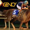 Horse racing betting Singapore