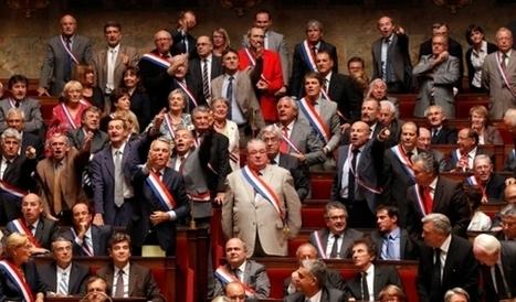 A quoi servira le député des Français de l'Etranger ? | Français à l'étranger : des élus, un ministère | Scoop.it