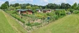 Des jardins partagés pour dynamiser les quartiers | Développement durable en ville - initiatives urbaines | Scoop.it