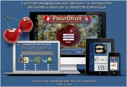 fleurofruit gratuit