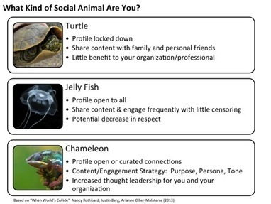 How Your Organization's CEO Can Use Social Media for Thought Leadership | e-Leadership | Scoop.it