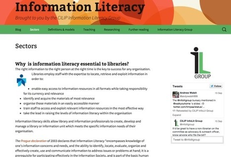Librarian as Teacher: CILIP Information Literacy Group | International Librarians Network | The Slothful Cybrarian | Scoop.it