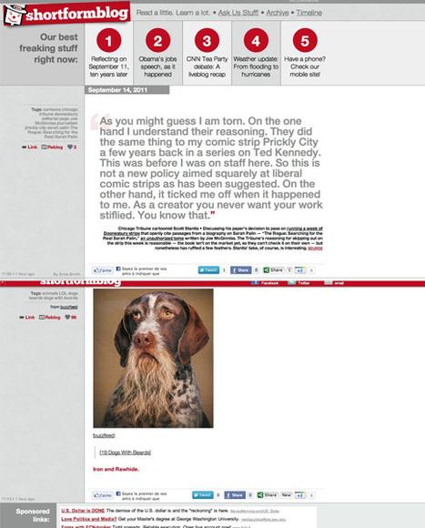 Le site d'info entièrement fait avec… Tumblr !   SocialWebBusiness   Scoop.it