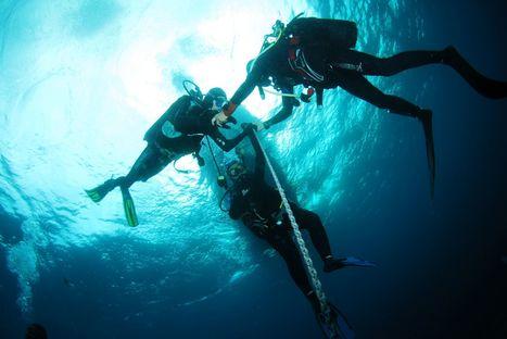 Nouvel arrêté réglementant les activités subaquatiques en Ria d'Etel   Moi, je plonge à l'Ouest !   Scoop.it