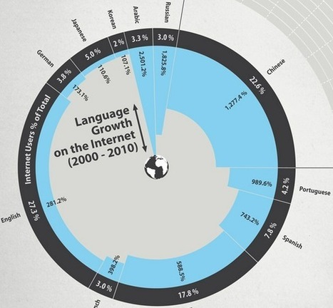 Over 70% of Internet Users in #China Rely on Online Translator Services | @dakwak's blog | Website Localization and Translation Insight | Scoop.it