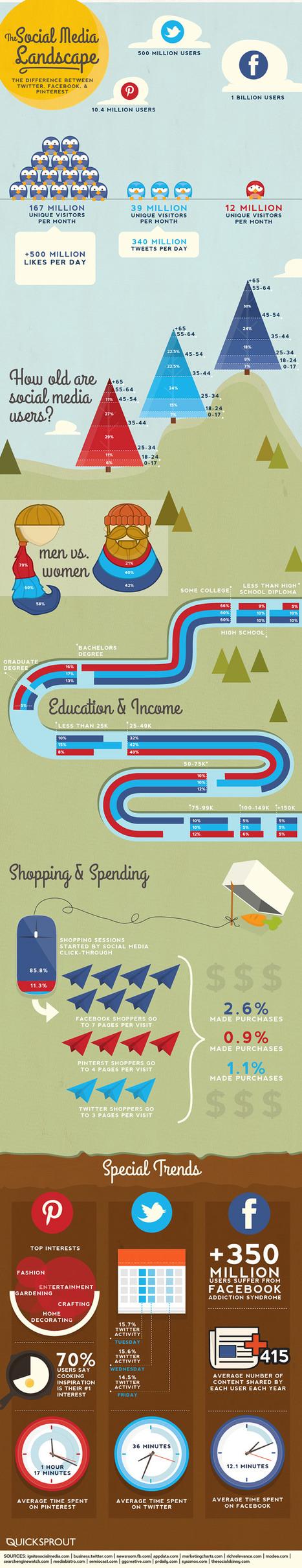 Facebook vs Twitter vs Pinterest – 2013 Statistics [Infographic]   visualizing social media   Scoop.it