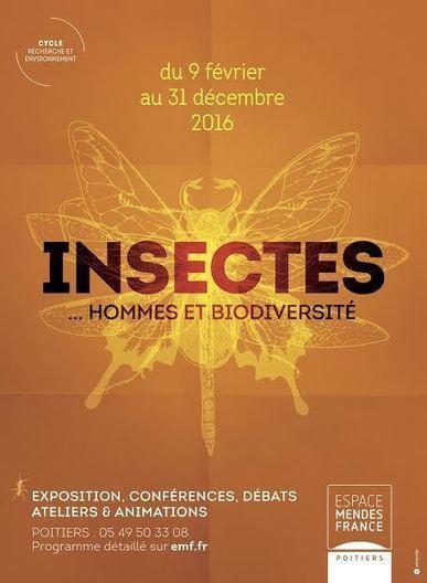 » Exposition « Insectes… Hommes et biodiversité » – DERNIERS JOURS !!!!! | Espace Mendes France, Poitiers | Scoop.it