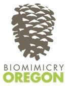 Biomimicry Oregon Project Jam   Sustainable Futures   Scoop.it