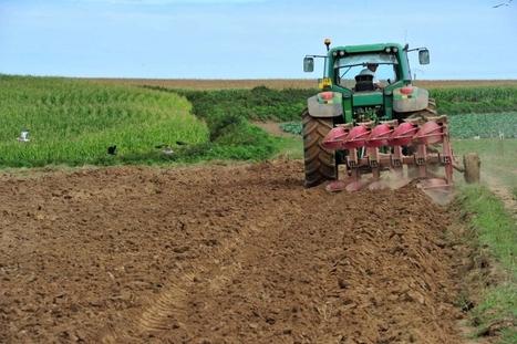 Agriculture: Bruxelles défend les producteurs | CIHEAM Press Review | Scoop.it