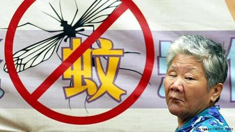 Dengue virus 'endemic' in China, say researchers | microBIO | Scoop.it