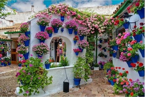 Patios andaluces | Hogar y jardin | Scoop.it