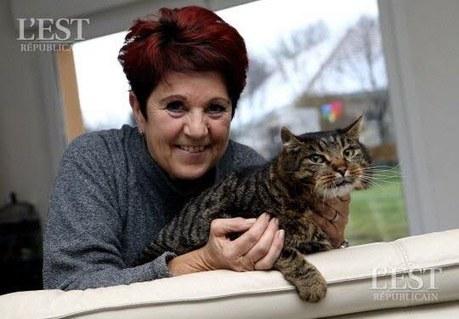 Abbévillers : un chat porté disparu pendant un an est retrouvé à 43 km de son domicile | CaniCatNews-actualité | Scoop.it