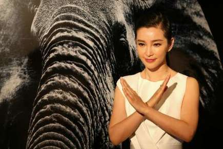 Hong Kong to ban ivory trade: leader | Animals R Us | Scoop.it