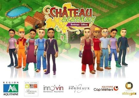 Chateau Academy : un serious game destiné à attirer les jeunes vers les différents métiers de la vigne et du vin. | Opinion et tendances numériques | Scoop.it