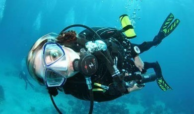 6 tips on how to dive sustainably   #scuba #scubadiving #ocean   Coldwater Scuba Diving   Scoop.it