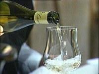Montecarlo ospita il ''Salotto del vino e del verde'' - Noitv.com | Wine in Tuscany | Scoop.it