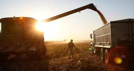 Les agriculteurs américains reviennent du «tout-OGM»   Nature to Share   Scoop.it