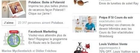 Récapitulatif des publicités Facebook | Blog TPE PME stratégie web | paradisauvage.com | Scoop.it