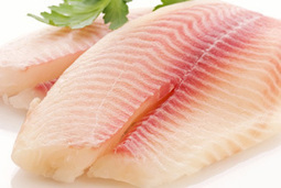 Is Fish Protein Harmful to Those with Hypofunction of Kidneys | Chinese Medicine Herbs Treatment  Diabetic Nephropathy | Scoop.it