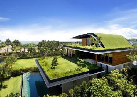 39 jardin sur le toit 39 in construire sa maison avec un. Black Bedroom Furniture Sets. Home Design Ideas