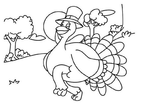 Turkey Coloring Pages (Free Printable Thanksgiving Coloring Pages) | 355x467