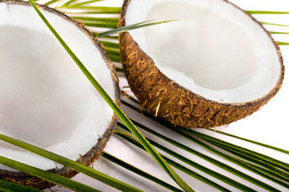 Coconut popularity expanding beyond confines of health food stores, observers say | Food History & New Markets | Scoop.it