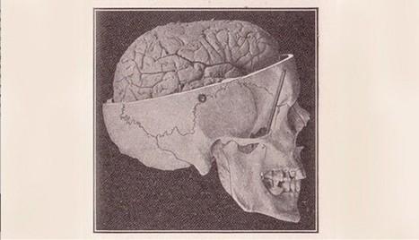 How to Build a Happier Brain | Formazione e Coaching | Scoop.it