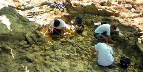 A Neanderthal trove in Madrid | Anthropology and Archaeology | Scoop.it