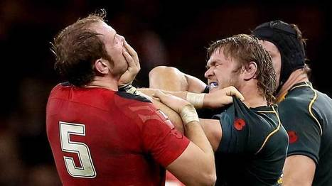 South Africa see off bruised Welsh | The World of Rugby Football Union | Scoop.it