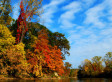 Four Poems for Autumn - Huffington Post | Poetry and Creative writing | Scoop.it