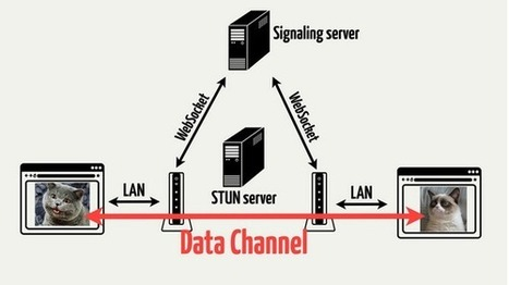 Live.pics.io — How We Developed a Service Using WebRTC | nodeJS and Web APIs | Scoop.it