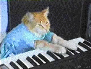 A Touch of Catnip | catnipoflife | Scoop.it