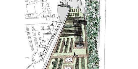 Des légumes, des poissons et du houblon cultivés sur les toits ou dans les parkings de Paris   Innovation dans l'Immobilier, le BTP, la Ville, le Cadre de vie, l'Environnement...   Scoop.it