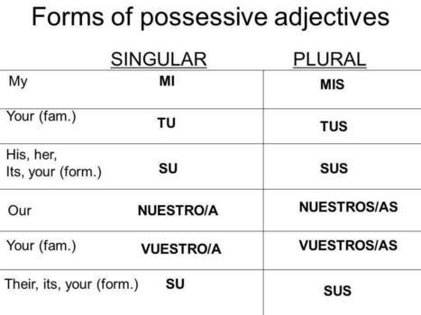 Image result for spanish possessive adjectives