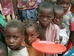 ONU: um terço dos alimentos do mundo são desperdiçados; 840 milhões passam fome | Branding a Brand | Scoop.it