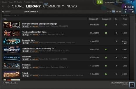 Steam propose 25 jeux sous Linux | le manchot rôti | Scoop.it