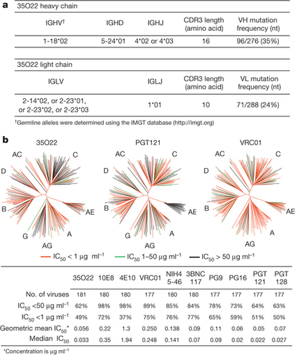 Broad and potent HIV-1 neutralization by a human antibody that binds the gp41-gp120 interface : Nature : Nature Publishing Group | Viruses and Bioinformatics from Virology.uvic.ca | Scoop.it