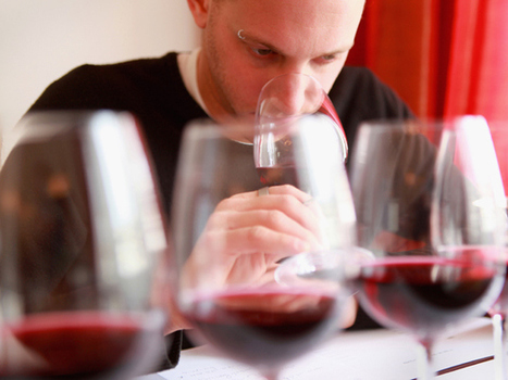 Are wine critics fooling us into buying pricier bottles? | Canada | News | National Post | 'Winebanter' | Scoop.it