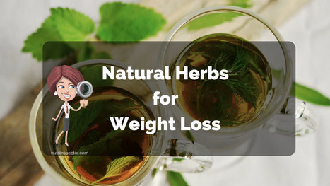 Only The Best Natural Herbs For Weight Loss and Better Health | Nova Scotia Art | Scoop.it