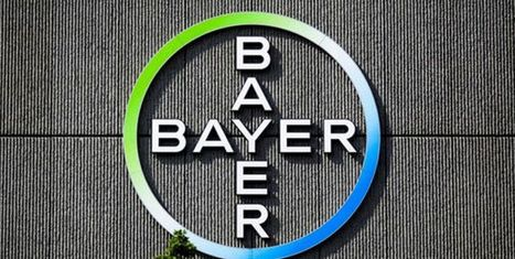 BREAKING NEWS: Bayer Could Pledge Billions to U.S. Investment and New Jobs if Monsanto Deal Wins Approval | Grain du Coteau : News ( corn maize ethanol DDG soybean soymeal wheat livestock beef pigs canadian dollar) | Scoop.it