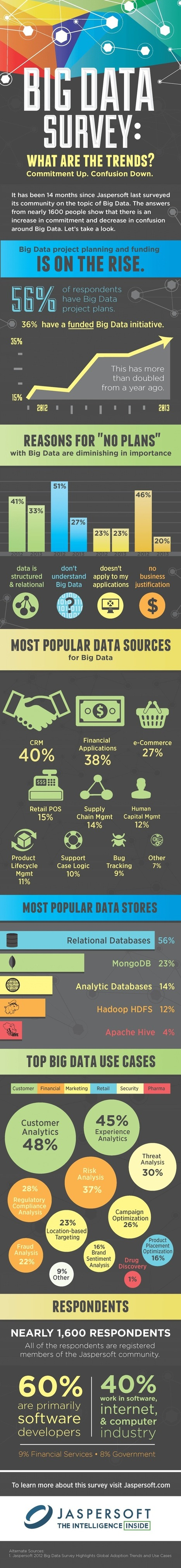 Big Data Survey: What Are the Trends? [Infographic] - Business 2 Community | Social Media Measurement, Analytics & ROI | Scoop.it