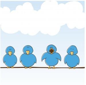 Cómo evitar ser un spammer en Twitter | Ciberseguridad + Inteligencia | Scoop.it