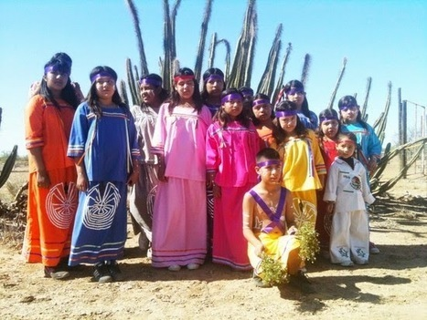 El Pueblo Pápago (Gente del Desierto) | Ayahuasca News | Scoop.it