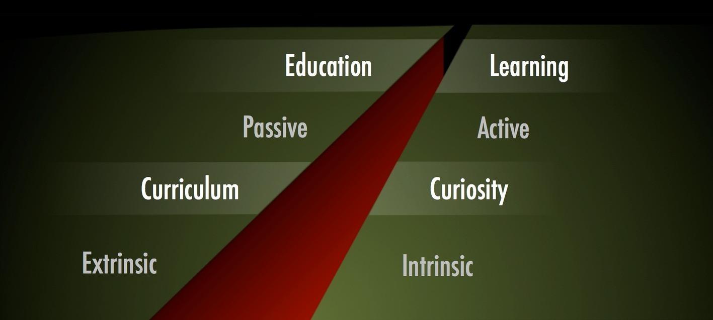 education versus experience essay