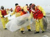 Latest oil incident belies painful truth - mySanAntonio.com | Oil Spill | Scoop.it